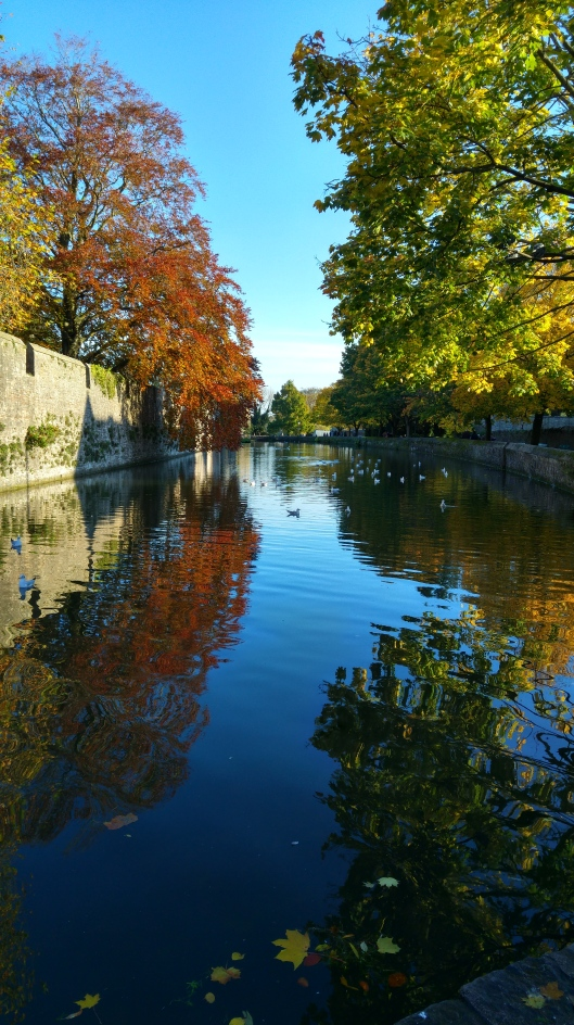 The moat, Bishop's Palace, Wells.